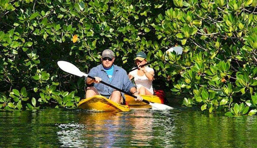 Nuarro Lodge 006 Kayaking Mangroves