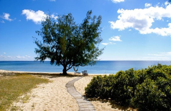 Nuarro Lodge 013 Beach with Tree