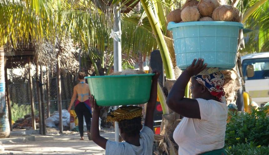 Blue Footprints 007 Coconuts
