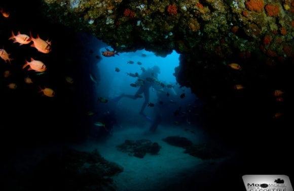 Blue Footprints Scuba Diving 008