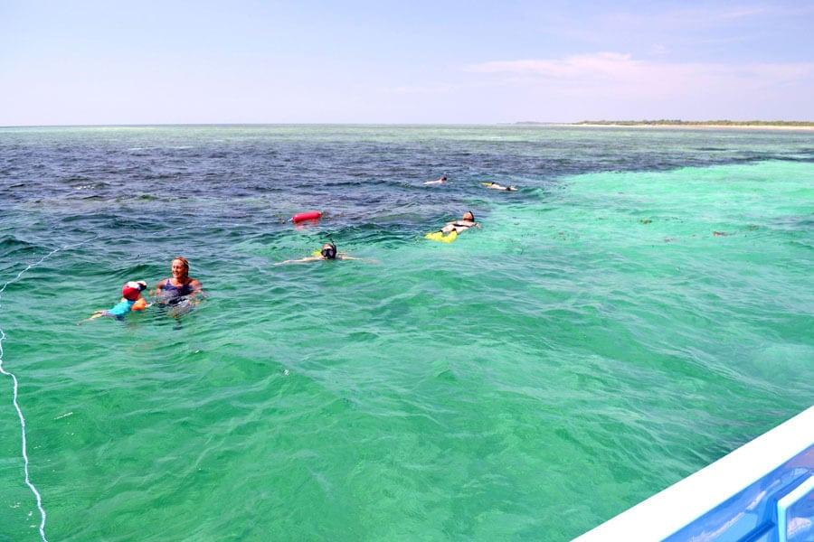 Situ island resorts Diving 005 dive and snorkel